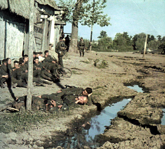 Scans Of Colour Shots Of The 6th Army/Stalingrad